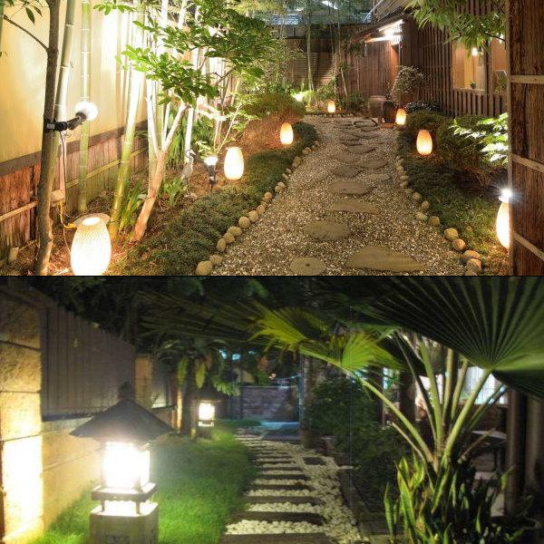 Conjunto de arboles iluminados en un jardín